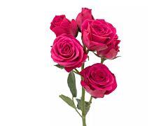 Spray Roses Hot Majolica