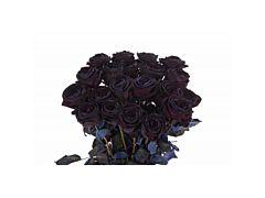 Black Tinted Roses