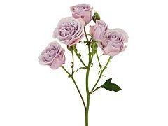 Spray Roses Silver Mikado