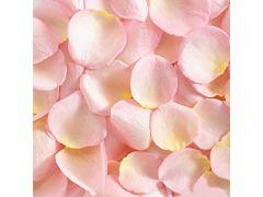 Rose Petals Light Pink - 2000 petals