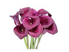 Mini Calla Lily Purple 50 cm