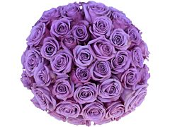 Purple Roses  - 40 cm Pack 125