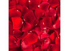 Rose Petals Red - 2000 petals