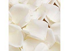 Rose Petals White - 2000 petals